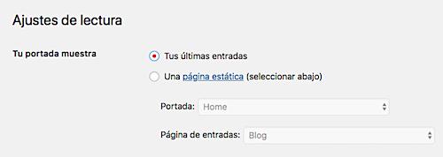 Puedes configurar una página de inicio dinámica para tu proyecto a través de los ajustes de lectura de WordPress