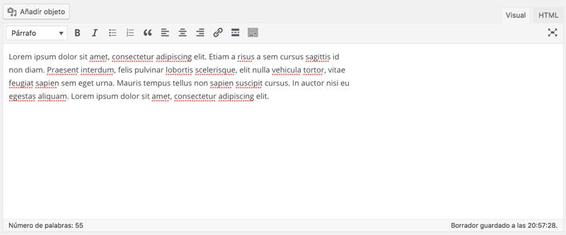 El editor de texto es una versión simplificada de un procesador de texto convencional como Word o Google Docs