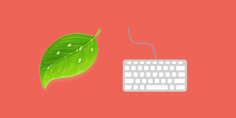 Cómo editar WordPress de forma fácil con Coda