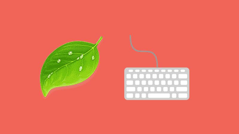 Como editar WordPress de forma fácil con Coda2